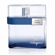 Salvatore Ferragamo Free Time Pour Homme Edt 100 Ml