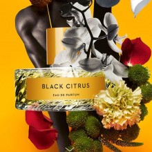 Vilhelm Parfumerie Black Citrus Edp 100 ml